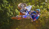 Dirt Shark - BAMLAND ft. Justin Barcia