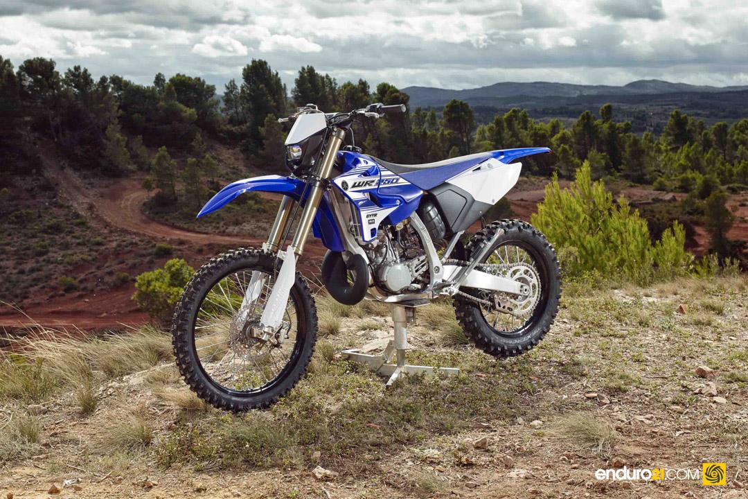 Engine Protector Yamaha Ttr
